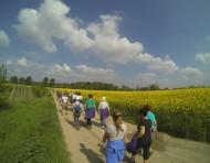 Un joli tour en campagne à Avesnes-le-Sec