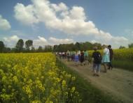 Un joli tour de 7 km à Oisy