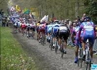 Course cycliste le Paris-Roubaix