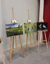 Expo_Photos_Biodiversite_Milieux_Humides_OT_Porte_Hainaut_Fev2019.jpg
