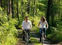 Vélos - Saint-Amand-les-Eaux
