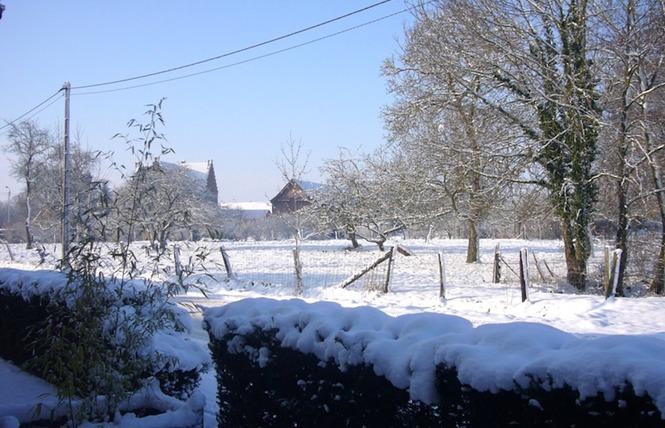 Gîtes Du Clos du Carme 11 - Saint-Amand-les-Eaux
