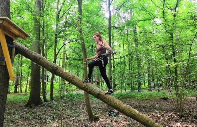 Pure Aventure - Parcours Accrobranche en forêt 1 - Raismes